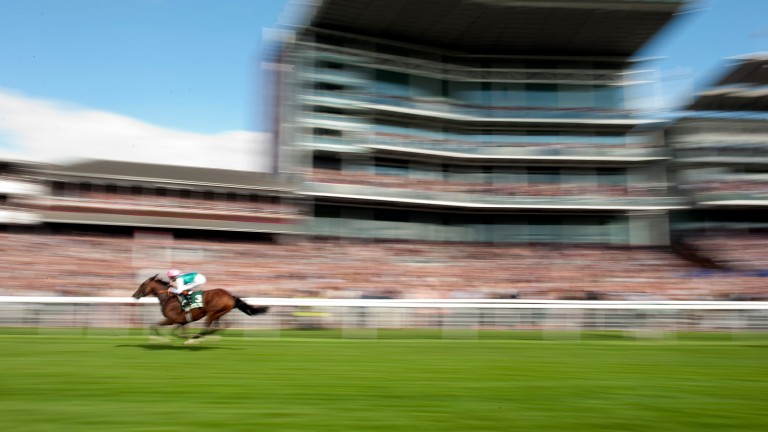 Frankel: noney could get close to the legend in the Juddmonte International at York