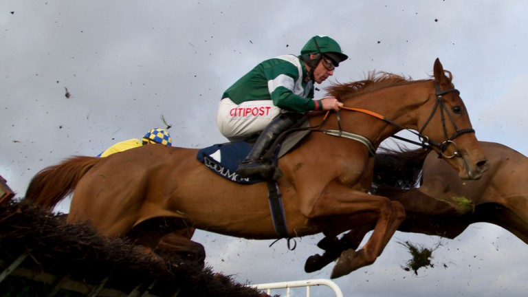 Rosie Alice: bidding to step up on a good second at Galway