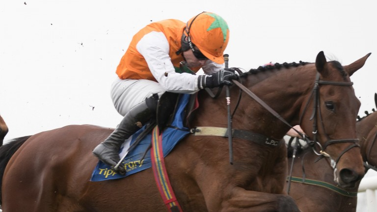 Snugsborough Benny: 'He's in good form,' says trainer Liam Cusack