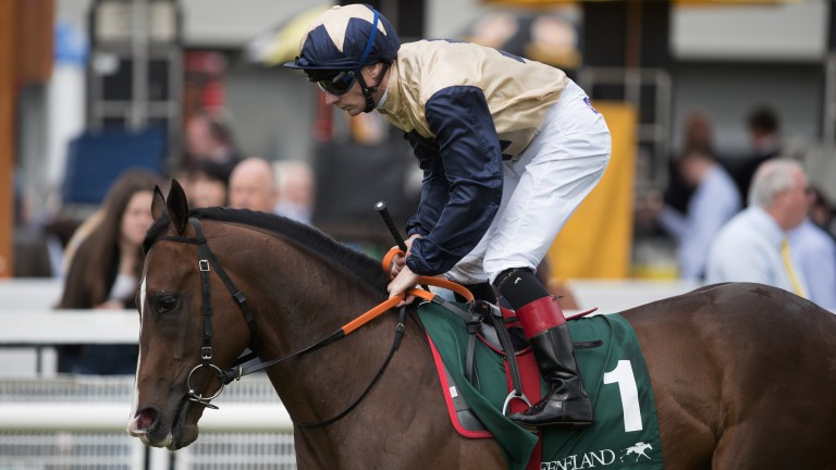 Beckford: Gordon Elliott has the Breeders' Cup Juvenile Turf in his sights for the Bated Breath colt