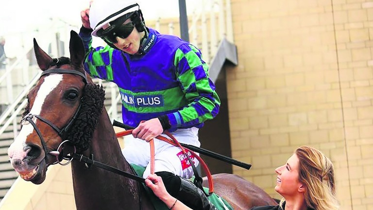 """Stable groom Kate Tracey: """"Your first emotion is pure shock"""""""