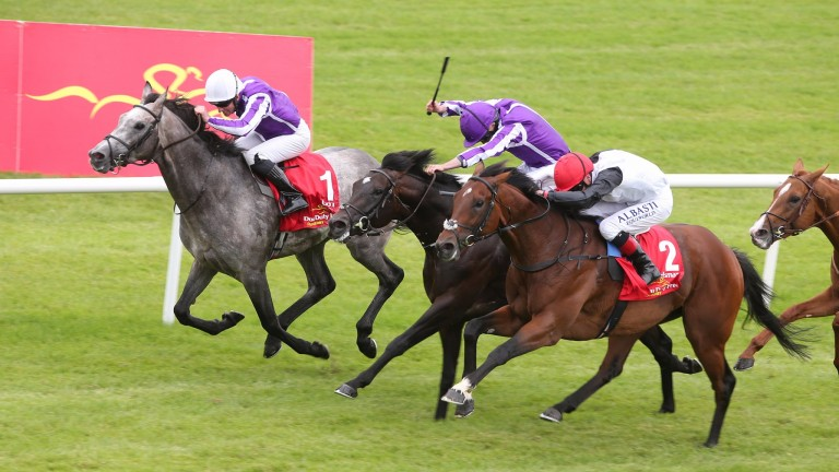 Capri (grey) beat Cracksman (red cap) who has since won the Great Voltigeur and Prix Niel in the Irish Derby