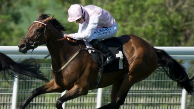 Coconut Creme: has enjoyed a break since her Ribblesdale run at Royal Ascot in June