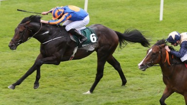 Curragh Sun 13 August 2017 Picture: Caroline Norris    Sioux Nation ridden by Ryan Moore winning The Keeneland Phoenix Stakes from Beckford ridden by Declan McDonagh, 2nd, and Actress ridden by Seamus Heffernan, 3rd.