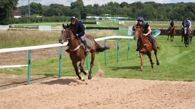 Jockeys gave the new bend the thumbs-up after trials last week