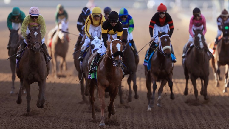 Finest City's finest hour: the Filly & Mare Sprint at the Breeders' Cup last year