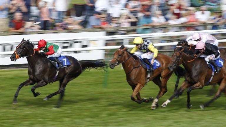 Hollie Doyle and Billesdon Bess win at Salisbury