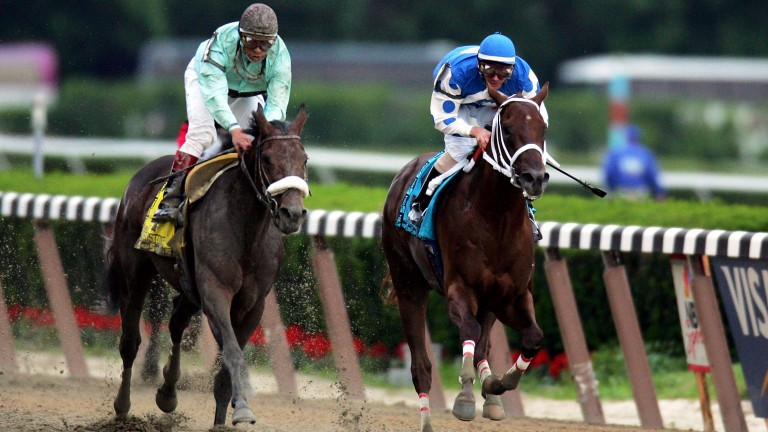 Smarty Jones (right): won the first two legs of the Triple Crown but beaten by Birdstone (left) in the Belmont