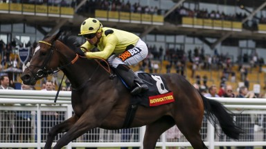 Madeline will step up in class in York's Group 2 Sky Bet Lowther Stakes on Thursday
