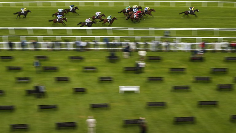 Newbury: opener at the Berkshire track should provide some pointers