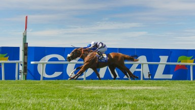 Ulysses (nearside) wins the Eclipse from Barney Roy and the pair are set for a rematch on Wednesday