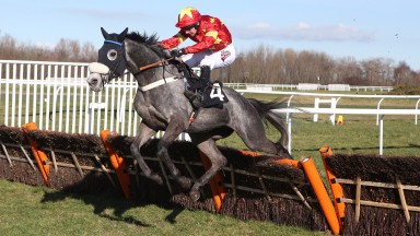 Dear Sire and Will Kennedy: won the feature Spirits Of Scone Stone Of Destiny Handicap Hurdle