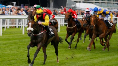 Set In Stone winning for Long at Newbury on Friday