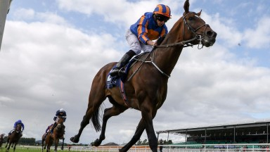 Order Of St George and Ryan Moore easily land the odds in the Irish St Leger Trial
