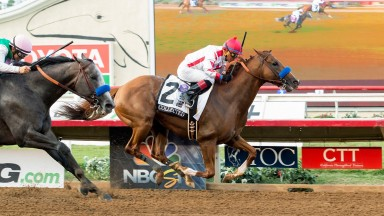 Collected (Martin Garcia) holds off the final-furlong challenge of Arrogate to win the $1m Pacific Classic at Del Mar