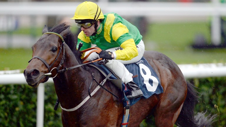 Stake Acclaim and Robert Winston: the pair have a good chance in the Sky Bet Windsor Sprint Series Finale