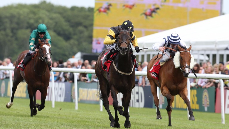 Jack Dexter (centre) lands the 2013 Chipchase Stakes, the most prestigious of his ten wins