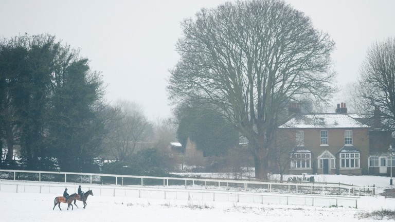 Widespread snow and freezing temperatures continue to pose a threat to fixtures