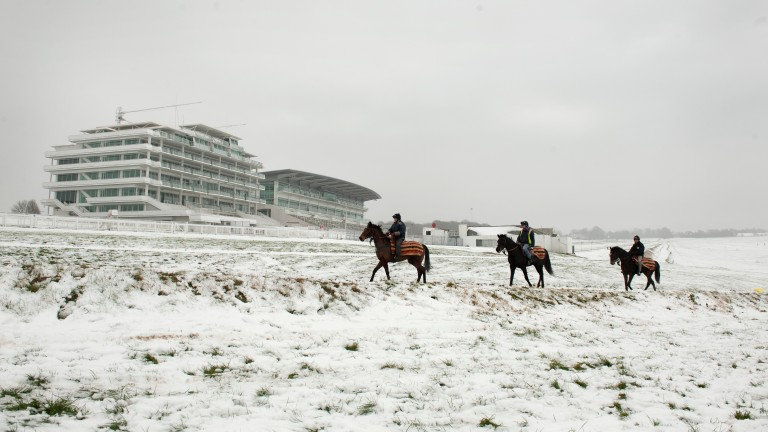 John Akehurst's horses walk pass the stands on the snowy Epsom Downs
