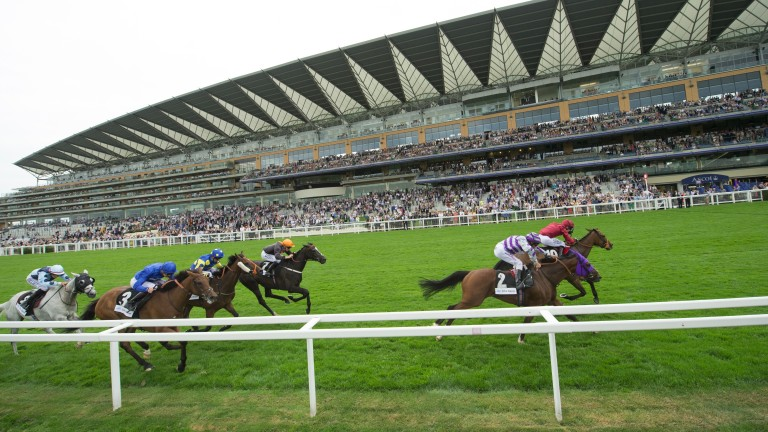Ascot hosts the feature meeting on Friday
