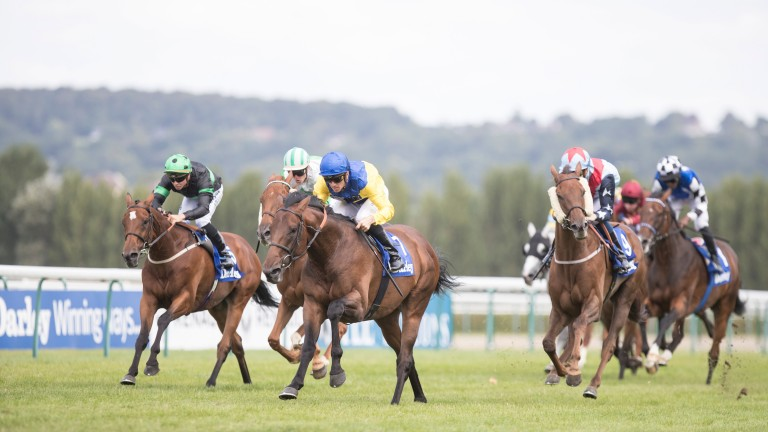 Marmelo (yellow and blue silks) lead home the field in the Darley Prix Kergorlay at Deauville on Sunday