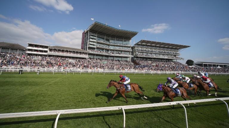 York racecourse: home of the Macmillan raceday