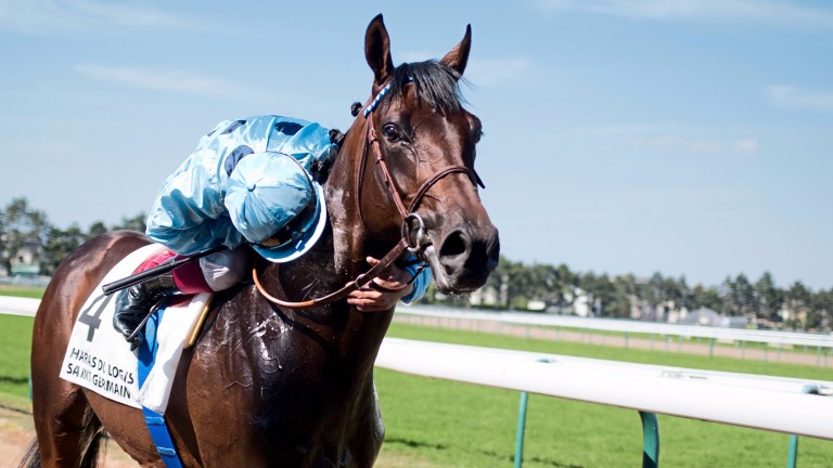 Almanzor: won on Jean-Claude Rouget's first Irish foray with the champion