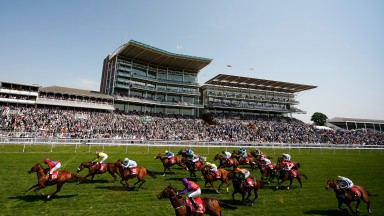 Thesme (light blue, third) runs a cracker to finish placed at York