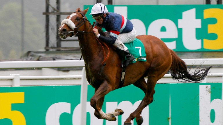 Tullius: likeable gelding won 11 of his 42 starts