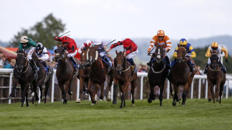 Bradfield Magic (second right) finishes second at Salisbury last week and turns out quickly at Chepstow