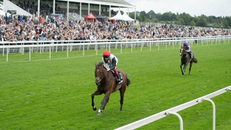 Cracksman: could run in the Champion Stakes