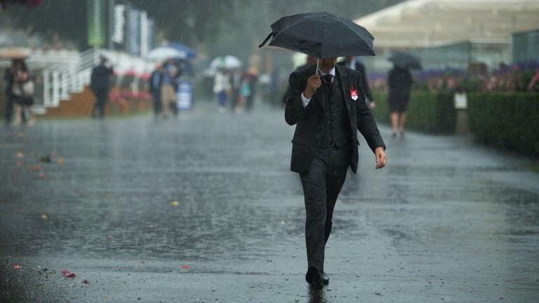 Umbrellas up: a wet start to the Ebor festival with rain hitting the track on Wednesday morning