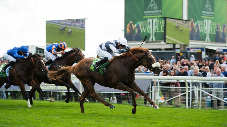 Ulysses, ridden by Jim Crowley, wins the Juddmonte International