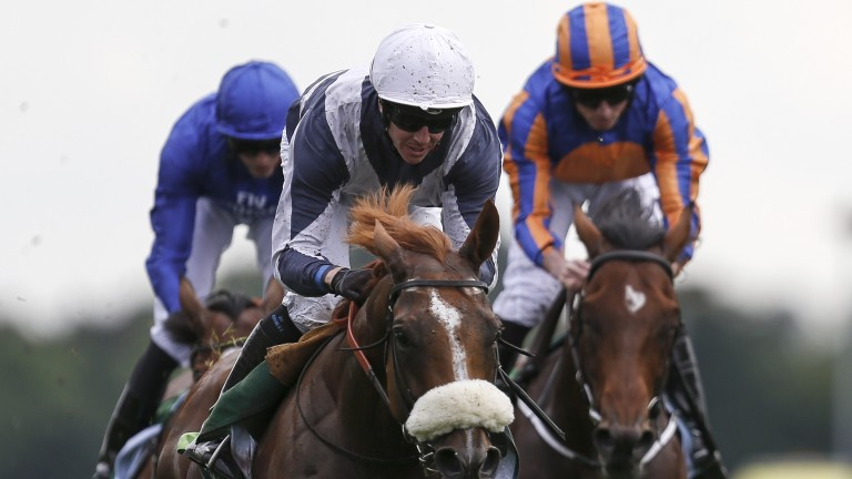 Churchill (orange and blue striped cap) chases home Ulysses at York