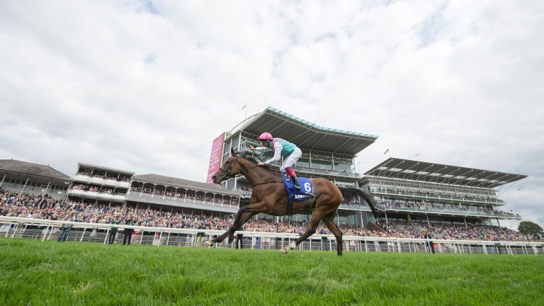 Enable: won the Yorkshire Oaks by five lengths in 2017