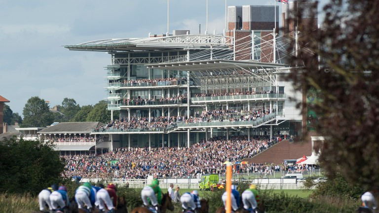 Runners in the 7f fillies' handicap won by Lincoln Rocks race towards the packed stands at York on Thursday
