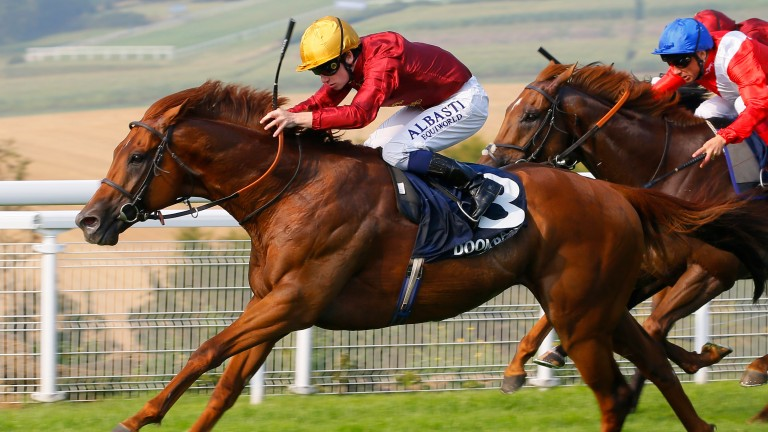Lightning Spear looks set to start hot favourite for the Celebration Mile at Goodwood