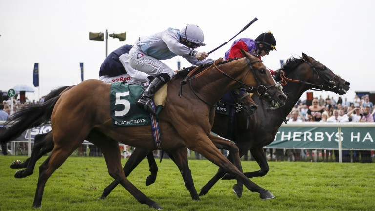 Montaly (near side) powers home to overhaul Dartmouth in the Lonsdale Cup