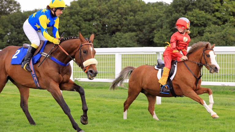 Ruby Beams and Gem get the better of ex-racehorse Ambivalent About and Lois Williams