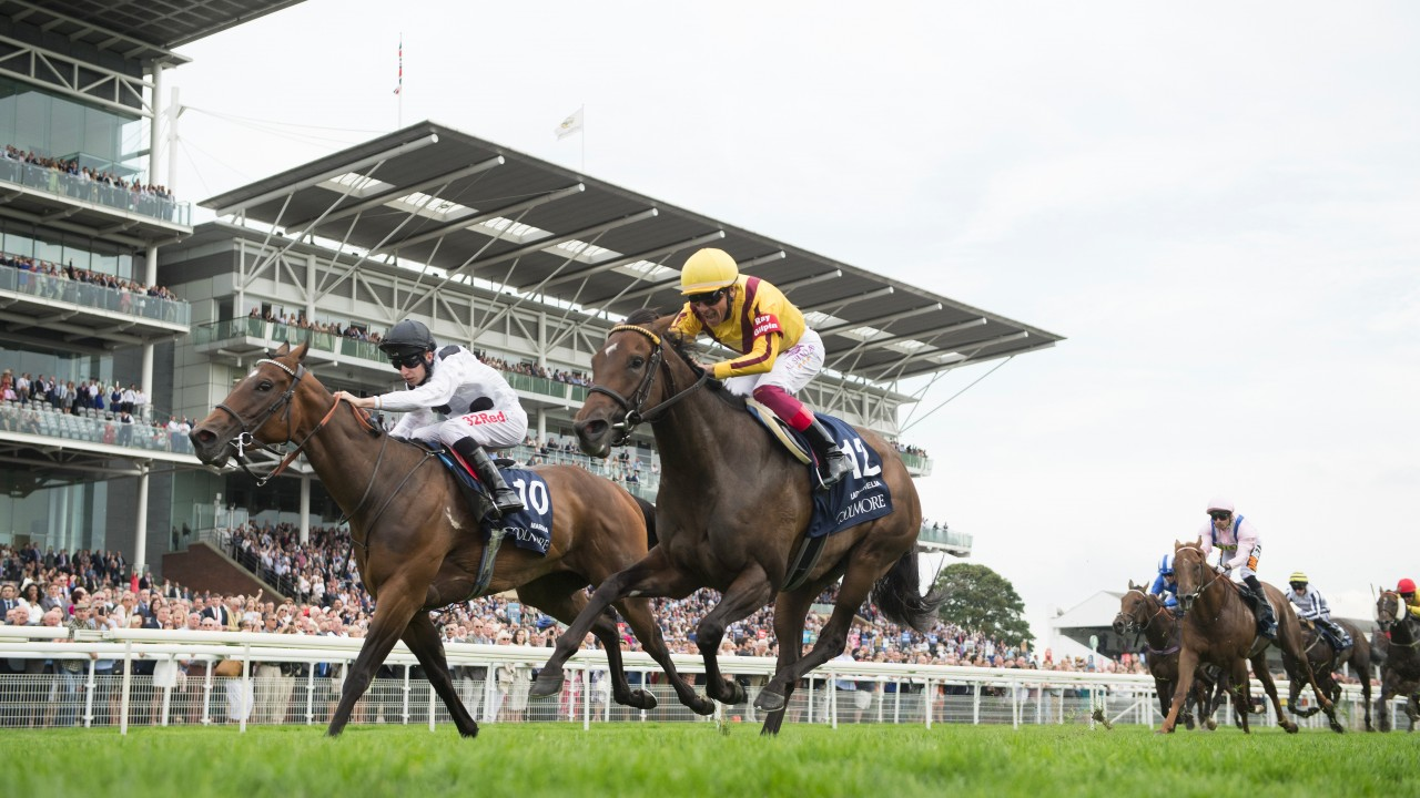 Dettori celebrations cut short as Marsha grabs Lady Aurelia on the line