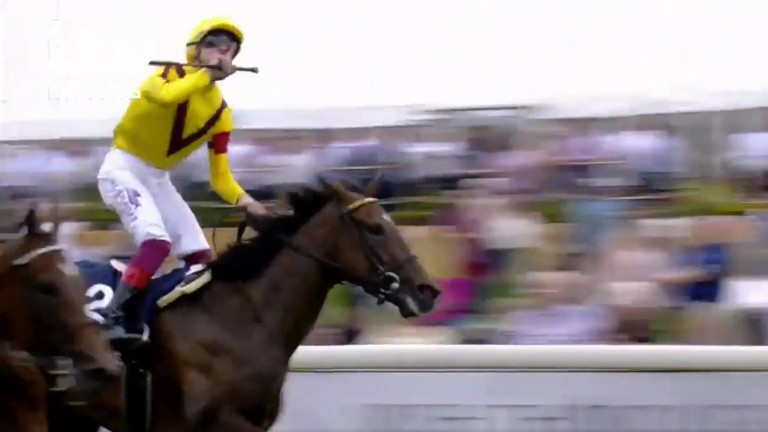 ITV Racing viewers saw this shot of Frankie Dettori wrongly celebrating after thinking his mount Lady Aurelia had won the Nunthorpe. The photo finished revealed Marsha just pipped him to the post