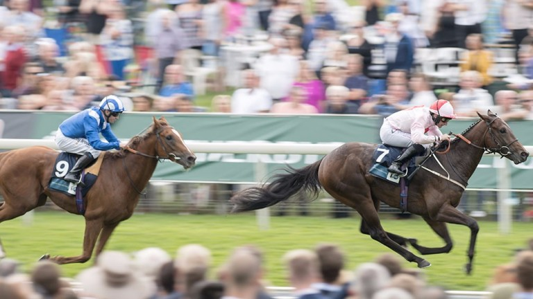 The well-bred Dream Today surges clear to make a winning start