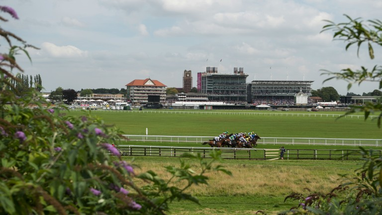 York: racing fans can expect three days of fantastic action