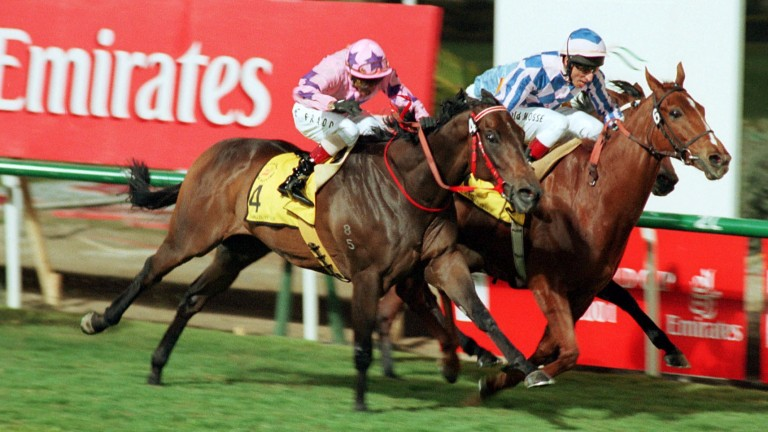 Jim And Tonic (right): the Dubai Duty Free winner was not only trained but also bred by Francois Doumen and wife Elizabeth