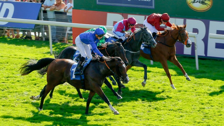 Sound And Silence (blue): beating Abel Handy (green) at York