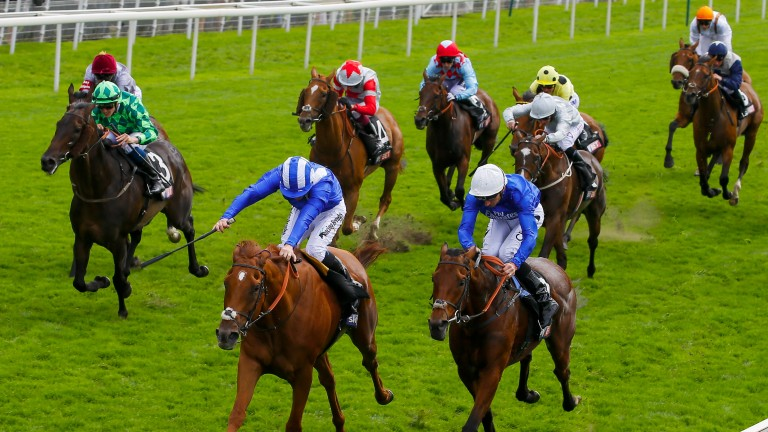 Erik The Red (green) makes good headway from the rear to finish third