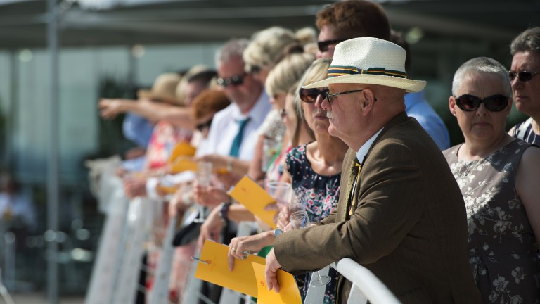 Prime position: racegoers enjoy the view from the stands