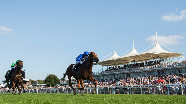 Big-race success: Jim Crowley steers Dutch Connection to victory in the Group 3 Weatherbys Racing Bank Supreme Stakes