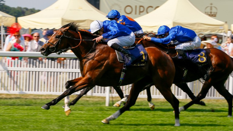 A T Bloodstock purchase Barney Roy (white cap) surges clear in the St James's Palace Stakes