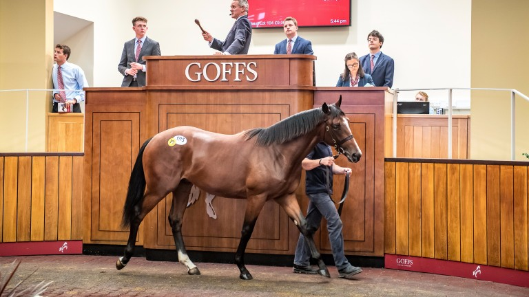 The Bated Breath colt who topped a remarkably strong opening session in Doncaster